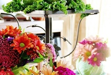 centerpieces. tablescapes. / by inspired (vintage.home.design)
