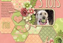 scrapbook layouts / by Emily Sadler