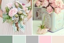 Colours and Themes / by Blue Blossom Wishes