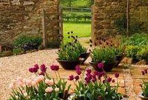 Garden Decor / by Martha Banning