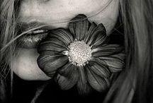 Flowers   Flores / by Fernanda Soares