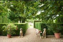 Gardens / by Eugenia LaFleur