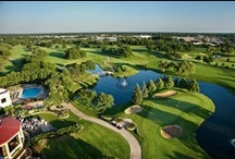 Golf in DuPage / For the golf enthusiast, DuPage has over 50 golf courses throughout the county and is home to PGA's 2012 Ryder Cup at Medinah Country Club. www.discoverdupage.com/vis_sports.cfm