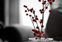 Color   Vermelho / by Fernanda Soares