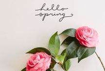Spring Feelings. / This board has everything to make you happy- sunshine, blooming flowers, and spring inspiration!
