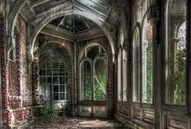 Derelict and Overgrown / by Julia Dalton