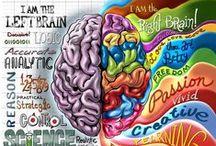 Psychology, cognitive and social