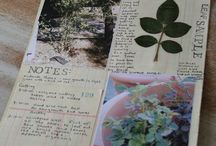 Home Ed: Nature Journals / by Shiloah Baker of the Homemaking Cottage