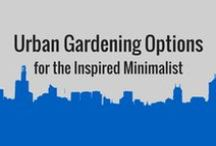 Urban Ag & Indoor Farming / Bright Agrotech is making it possible for people to grow healthy, nutritious and fresh food in even the most urban settings. This board is dedicated to the future of urban agriculture and urban farming.