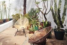 The Great Outdoor Inspiration / by Tania Welch || indobay