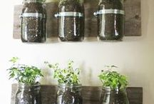 Gardening / DIY