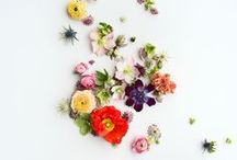 For the love of: Florals / A board dedicated to the love of Florals and Floral Prints