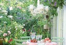All Things Gardening / by Stash Tea