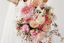 Bouquets: Sheaf