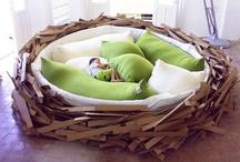 Nest Designing