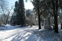 Grafmonumenten in de sneeuw / Februari 2012
