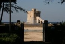 Puglia property for sale / Wide range of properties for sale in Puglia, Region of Italy. Villas, apartments, masserias, trulloes, flats, studios, building and agricultural lands, mansions, palazzi and ancient houses by the sea in Salento area, Puglia region, Italy.