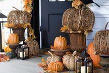 celebrate | fall / by Mackenzie Slayton