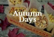 Family: Autumn / About Fall celebrations for family