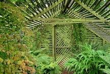 Greenhouses and Gardening Ideas / by Kathy Wiechert