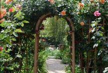 ♥ Doorways & Gateways ♥ / by Judy Robinson