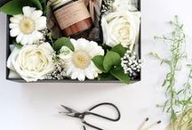 Spring Inspiration / Spring forward into spring-themed recipes, decorating and DIYs.