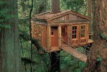 Swiss Family Robinson Style / Houses in or of the trees.