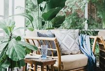 living in jungle / Inspired by lush and luxurious nature, the outside inside, green boheme, wild botanicals, vibrancy and liveliness, serenity and sanctuary.