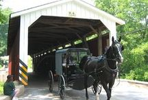 All things Amish :)