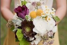 flowers / by Aimee Gandall