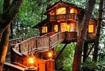 Home / Tree Houses! / by Annette Holstine