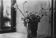PHOTOGRAPHY: Czech Photographer Josef Sudek / The photographs of Josef Sudek