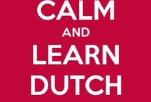 Dutch Language Resources