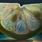 Photo Realism / Artwork by Dennis Wojtkiewicz