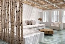 Nature-Inspired Interior Designs / Colors, patterns, themes, actual builds, inspired by nature.