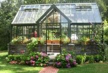 Green House and Potting Shed Ideas