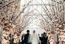 Wedding Trousseau