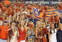 The Auburn Family / The best fans in the country! / by Auburn Athletics