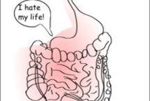 Bowel Dilemma to Gut Health / IBS, SCD, FODMAPS, leaky gut, SIBO, gut health info