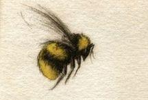 ℳeℒ's BᏋᏋ 0bsᏋssiøn / Bumblebees, honey bees  Melissa is Greek for Honey Bee