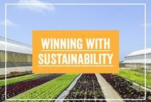 Winning With Sustainability
