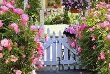 Gardens / by BBW Heartland