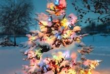 Feliz Navidad^_^ / by Livin'La Dulce Vida