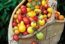 Tomatoes and such / Having a garden means less trips to the grocery store...quick and simple meals,  even if you only have a patio.  :-) / by Diane J. Davis