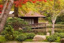 Tea House, Tea Room / Always tea house makes me feel relaxed. People who likes tea house will like peace.  Beautiful tea houses around the world.