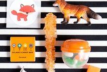Fox's 6th Bday / by Cynthia Hampton
