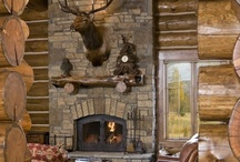 Heating Things up: Fireplaces / fireplaces / by Johnette Warner