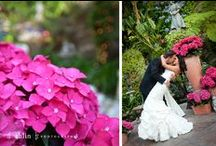 Our Wedding! / Small intimate affair in Laguna Beach, Ca. Small budget really helped in making things simple & personal to us!