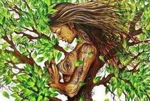 Trees world - Love it, feel it