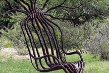Garden/Trees / by Pat Rizzi